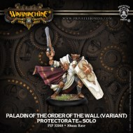paladin of the order of the wall (variant) protectorate solo