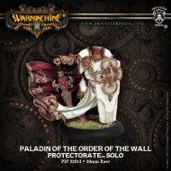 paladin of the order of the wall protectorate solo