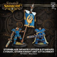 stormblade infantry officer and standard cygnar storm knight unit attachment